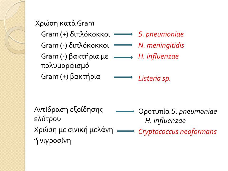 Χρώση κατά Gram Gram (+) διπλόκοκκοι Gram (-) διπλόκοκκοι Gram (-) βακτήρια με πολυμορφισμό Gram (+) βακτήρια Αντίδραση εξοίδησης ελύτρου Χρώση με σινική μελάνη ή νιγροσίνη