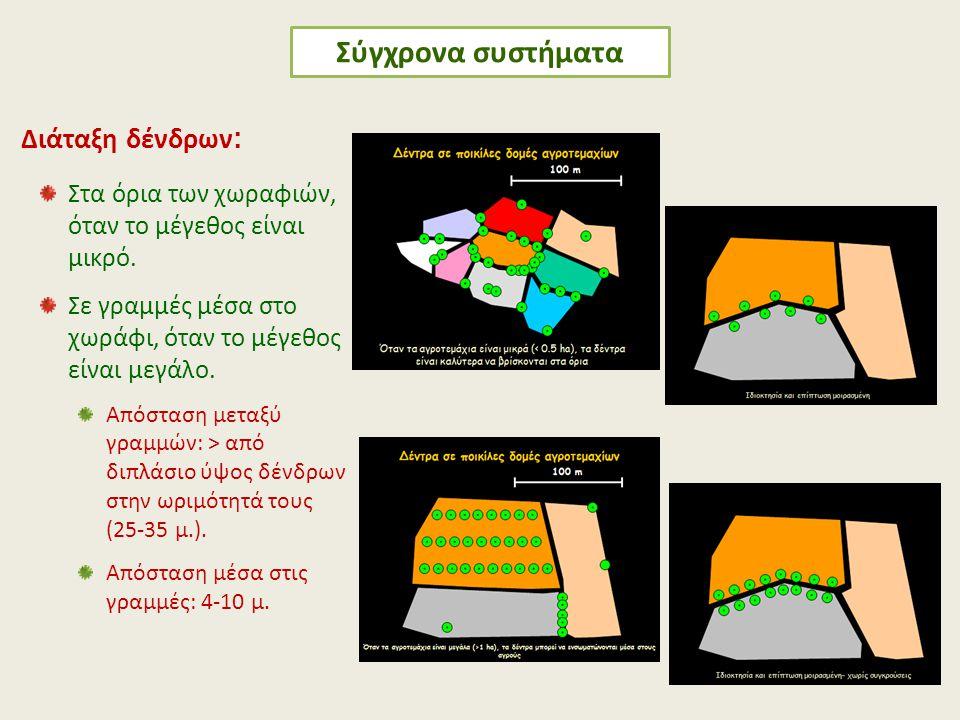 Σύγχρονα συστήματα Διάταξη δένδρων:
