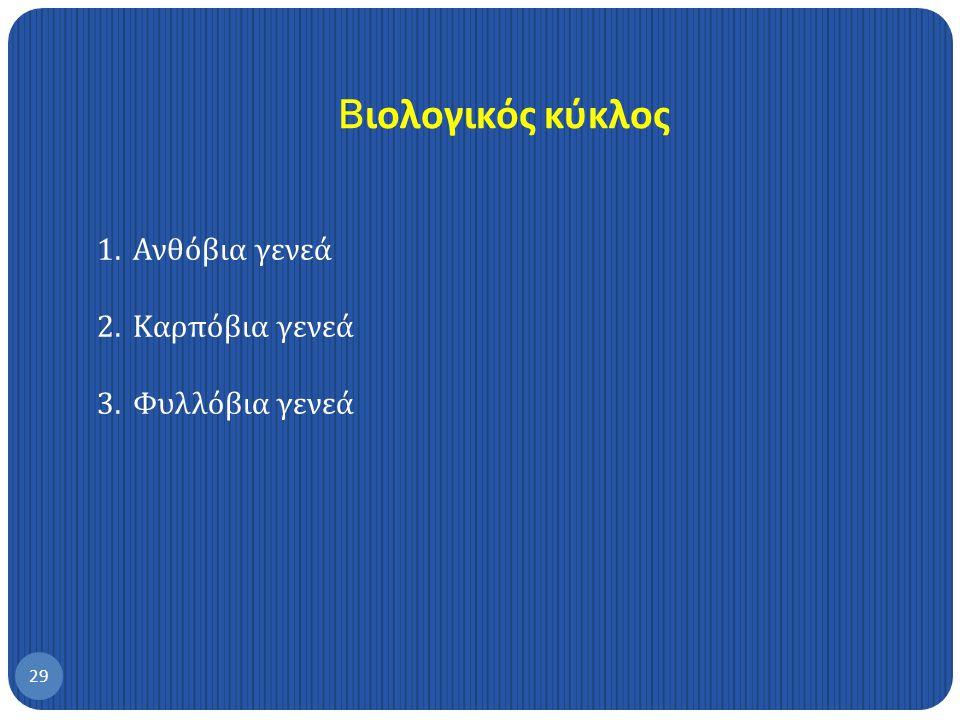 Bιολογικός κύκλος Ανθόβια γενεά Καρπόβια γενεά Φυλλόβια γενεά