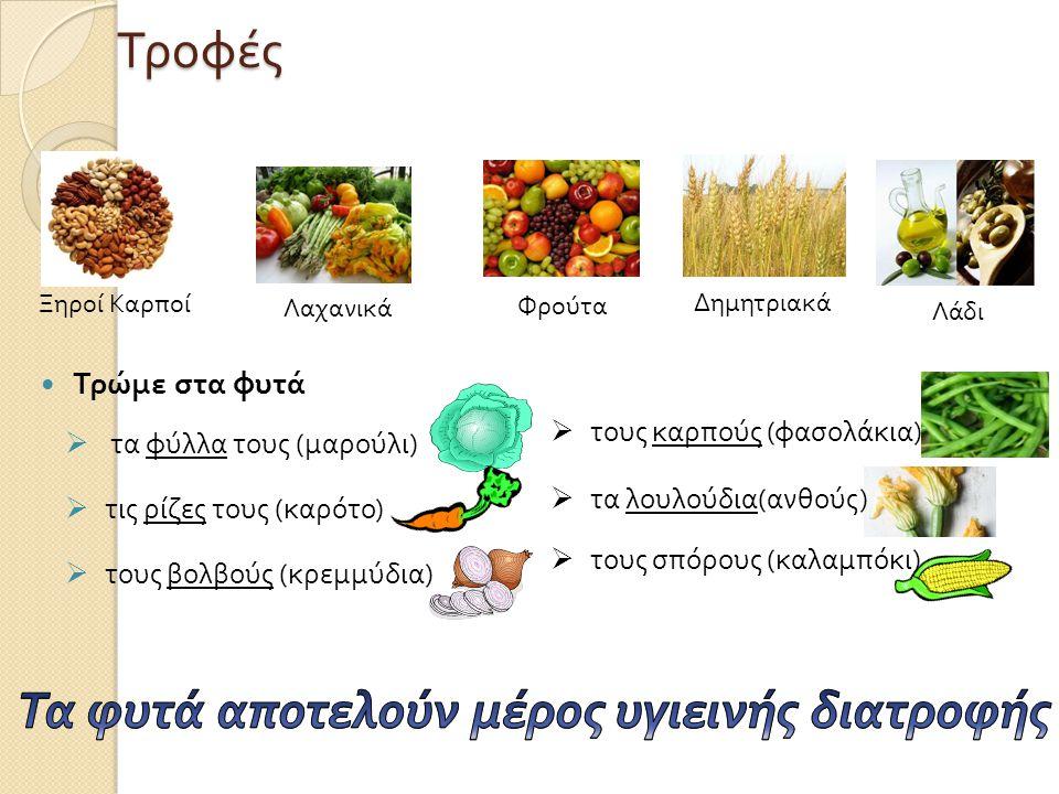 Τα φυτά αποτελούν μέρος υγιεινής διατροφής