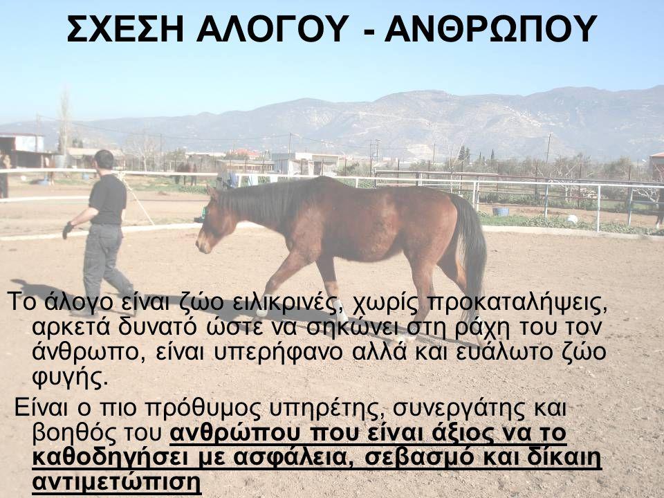 ΣΧΕΣΗ ΑΛΟΓΟΥ - ΑΝΘΡΩΠΟΥ