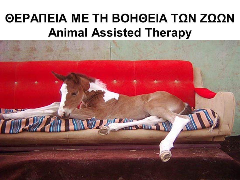 ΘΕΡΑΠΕΙΑ ΜΕ ΤΗ ΒΟΗΘΕΙΑ ΤΩΝ ΖΩΩΝ Animal Assisted Therapy