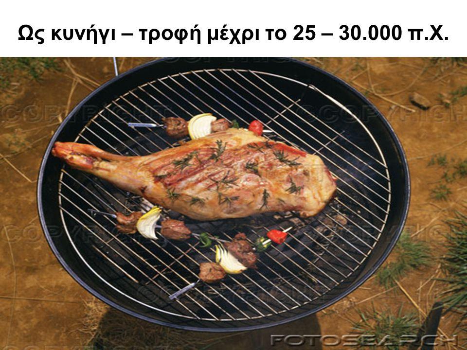 Ως κυνήγι – τροφή μέχρι το 25 – 30.000 π.Χ.
