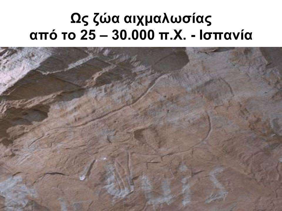 Ως ζώα αιχμαλωσίας από το 25 – 30.000 π.Χ. - Ισπανία