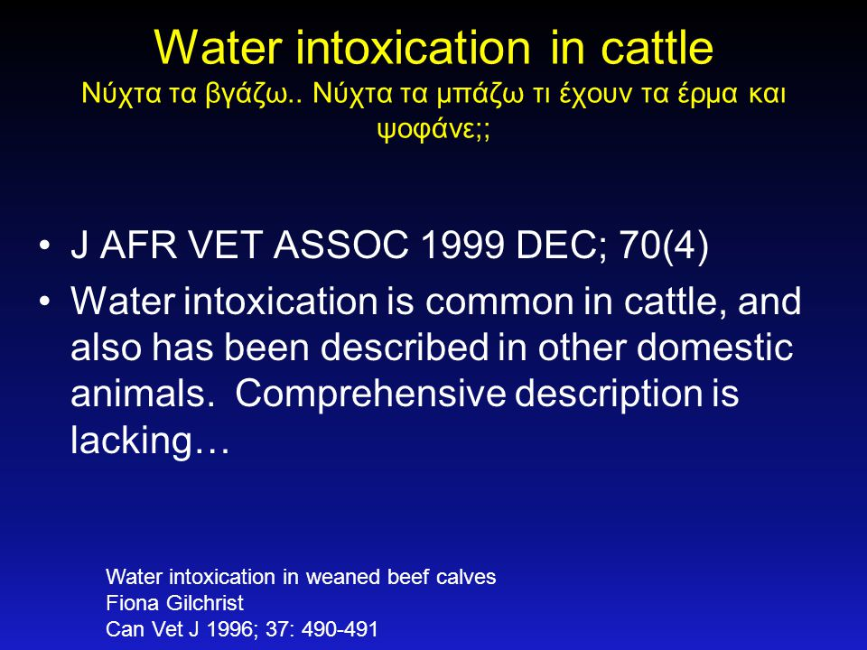 Water intoxication in cattle Νύχτα τα βγάζω
