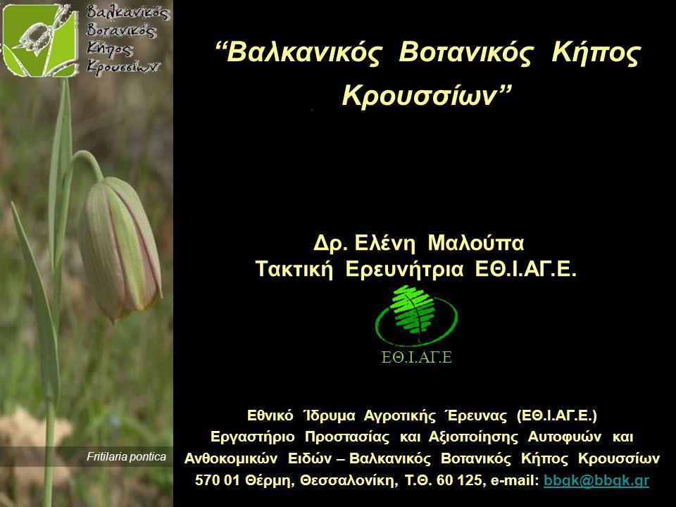 Βαλκανικός Βοτανικός Κήπος Κρουσσίων