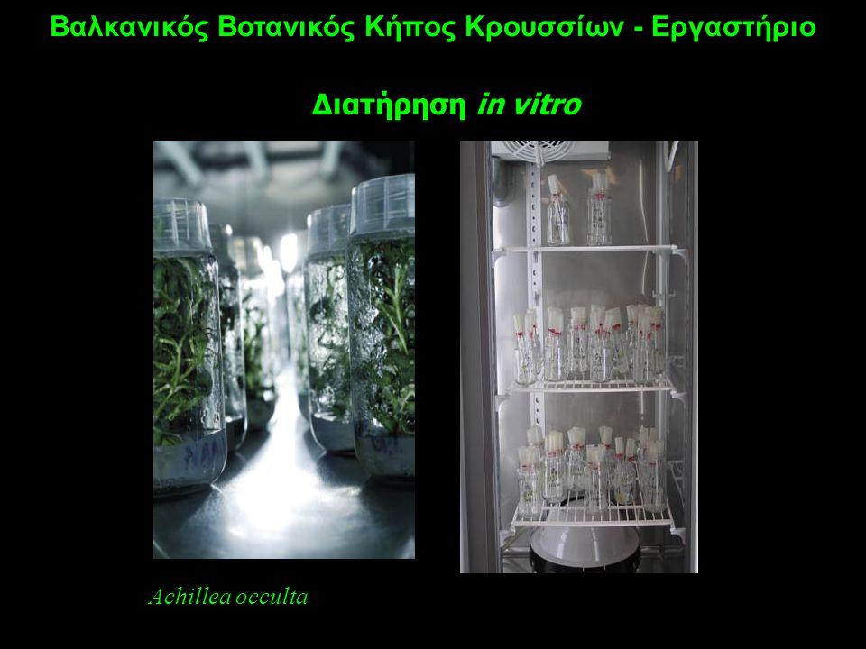 Βαλκανικός Βοτανικός Κήπος Κρουσσίων - Εργαστήριο