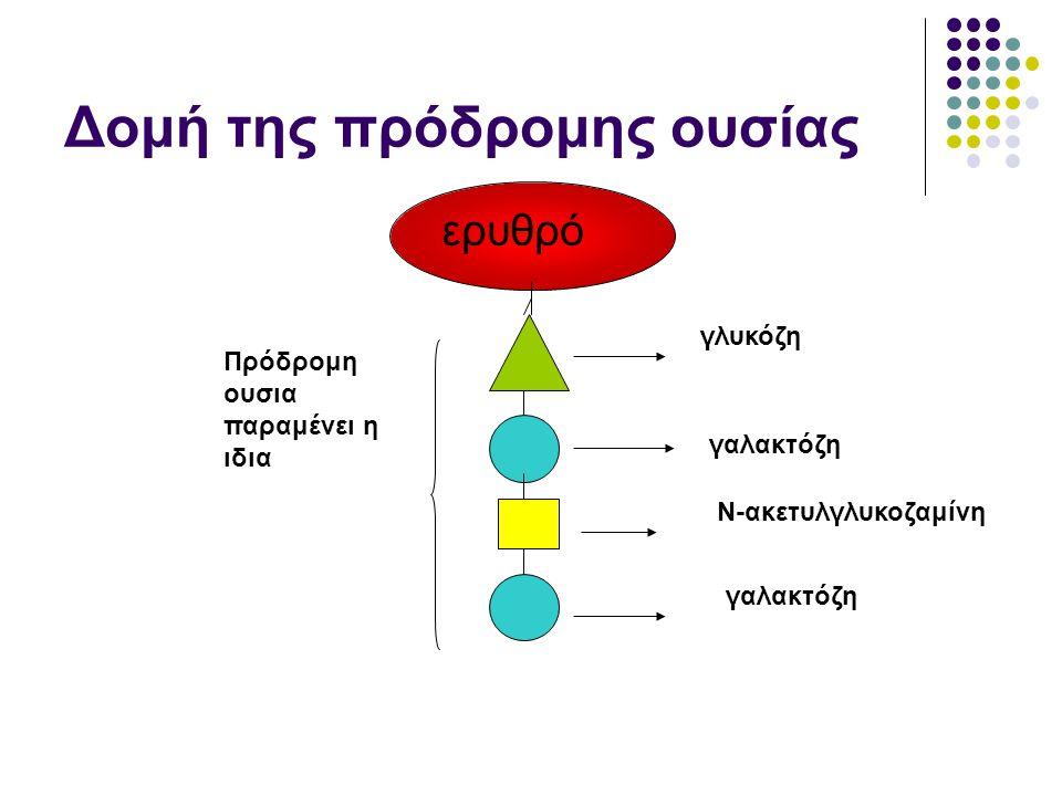 Δομή της πρόδρομης ουσίας