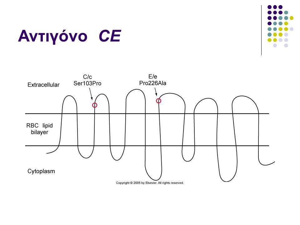 Αντιγόνο CE
