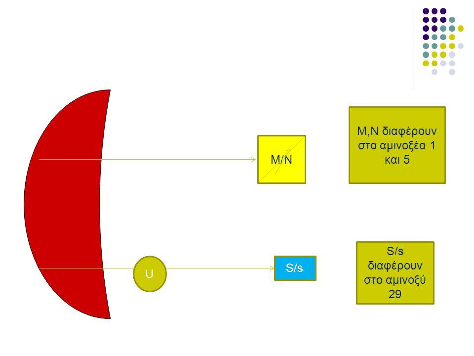 M,N διαφέρουν στα αμινοξέα 1 και 5