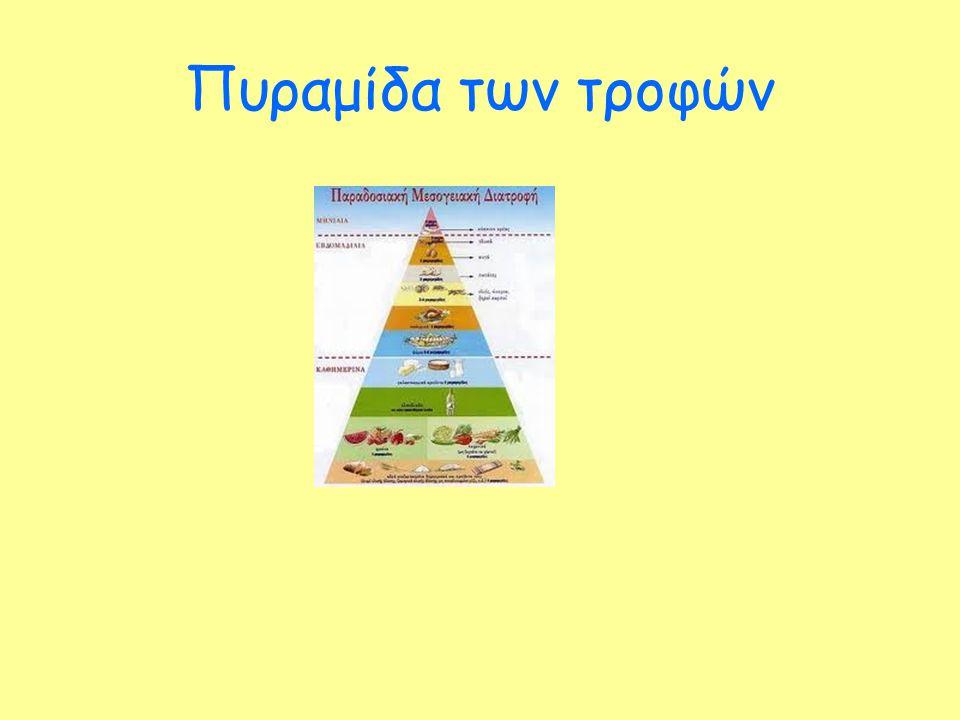 Πυραμίδα των τροφών