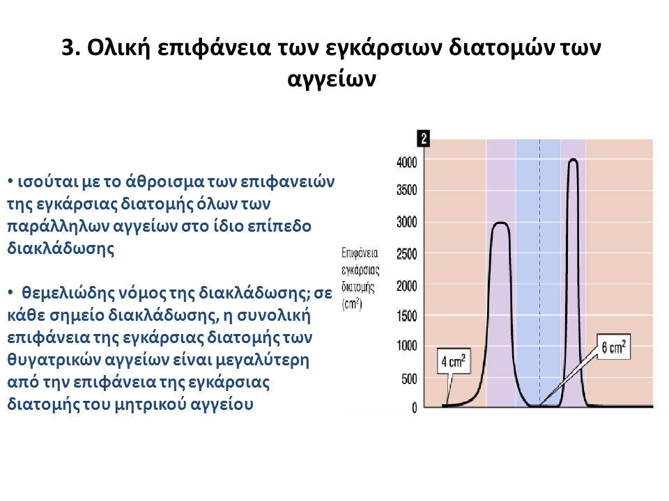 3. Oλική επιφάνεια των εγκάρσιων διατομών των αγγείων