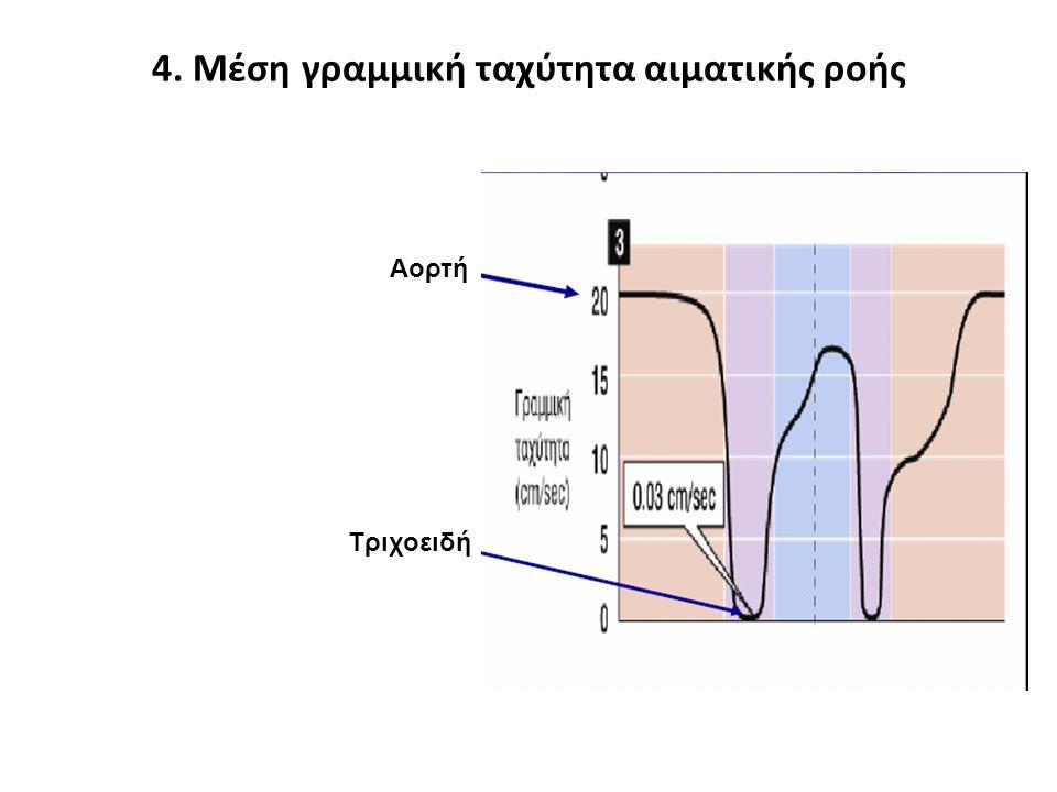 4. Μέση γραμμική ταχύτητα αιματικής ροής