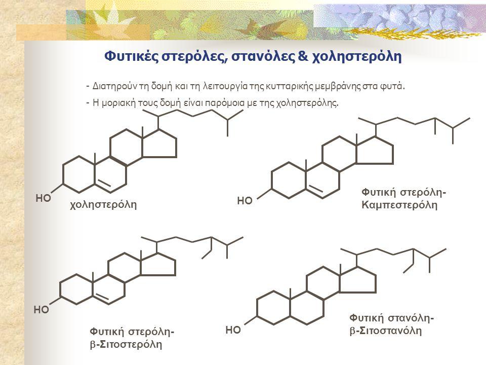 Φυτικές στερόλες, στανόλες & χοληστερόλη