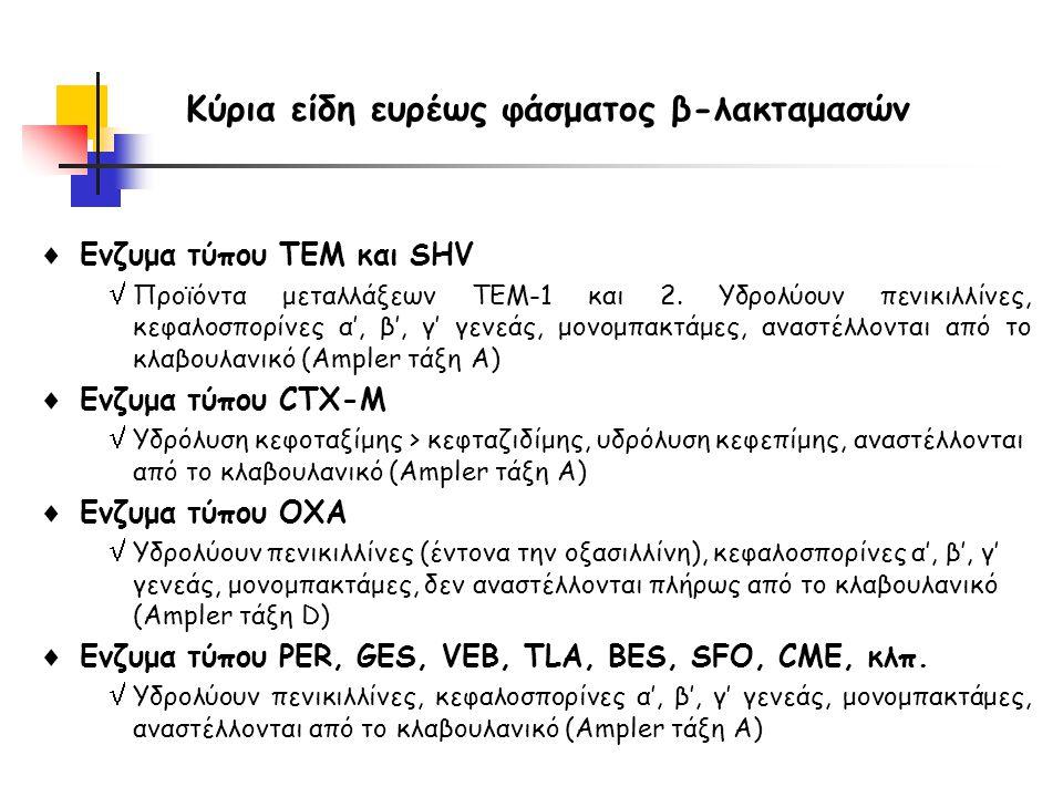 Κύρια είδη ευρέως φάσματος β-λακταμασών