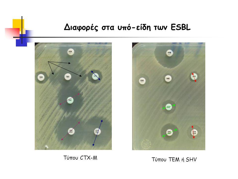 Διαφορές στα υπό-είδη των ESBL