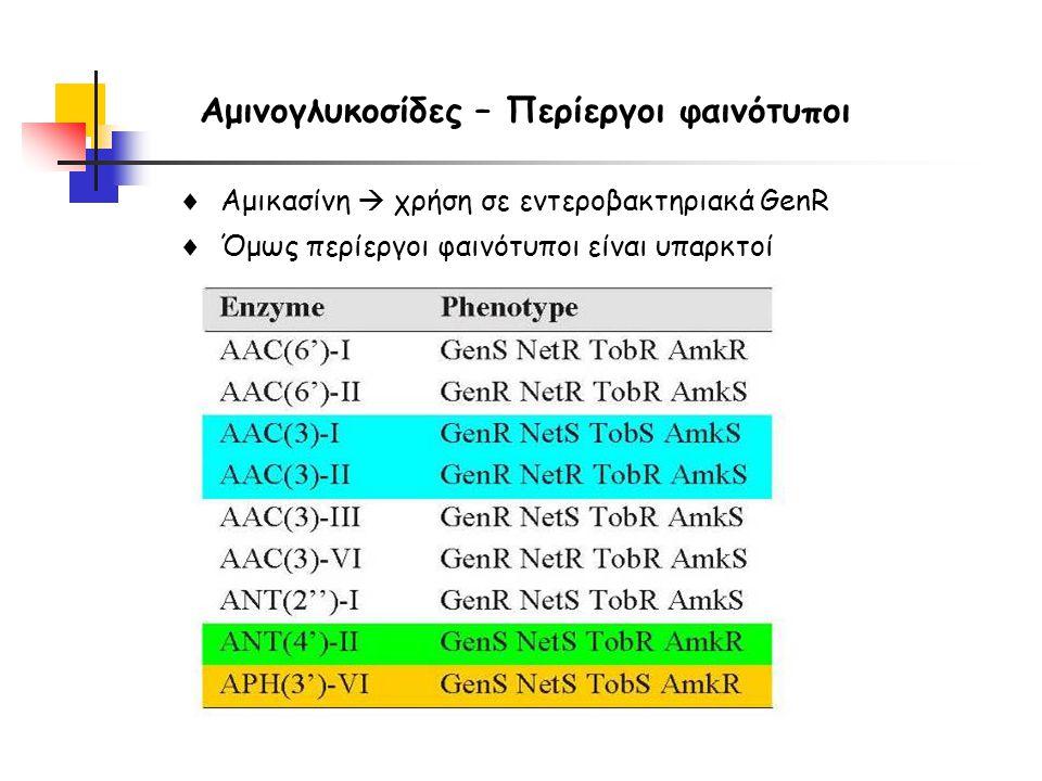 Αμινογλυκοσίδες – Περίεργοι φαινότυποι