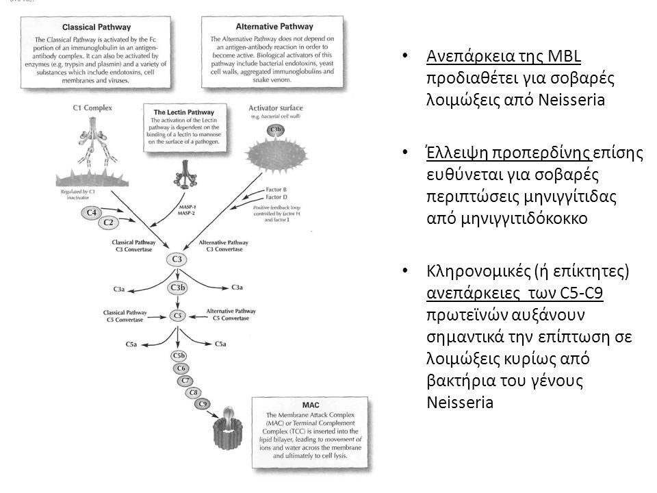 Ανεπάρκεια της MBL προδιαθέτει για σοβαρές λοιμώξεις από Neisseria