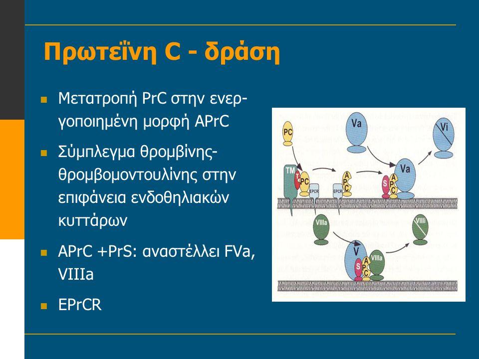 Πρωτεΐνη C - δράση Μετατροπή PrC στην ενερ-γοποιημένη μορφή APrC