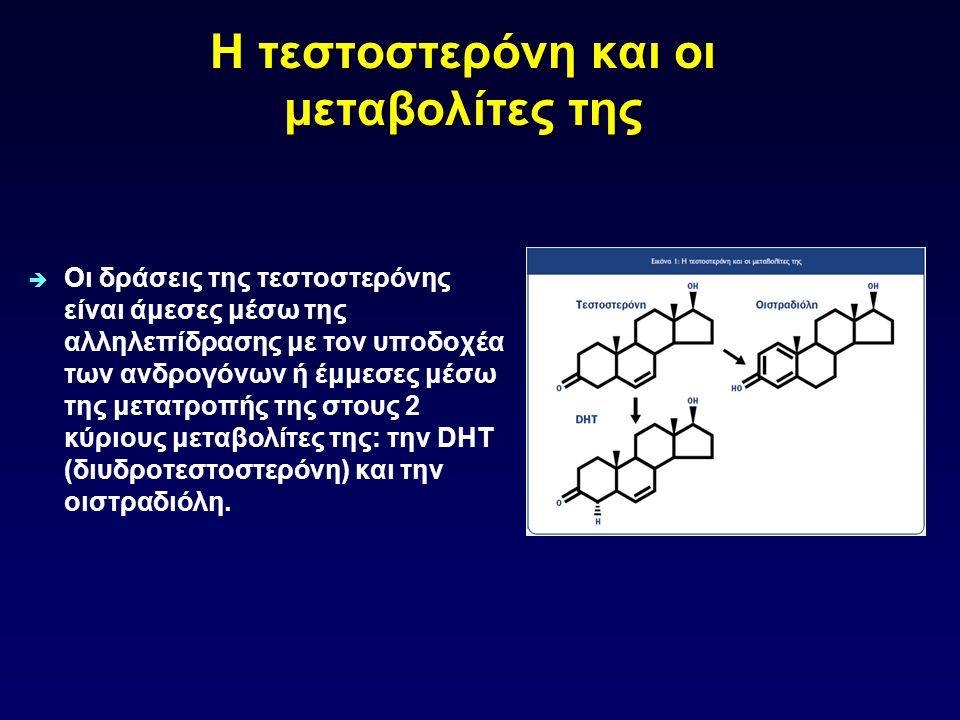 Η τεστοστερόνη και οι μεταβολίτες της