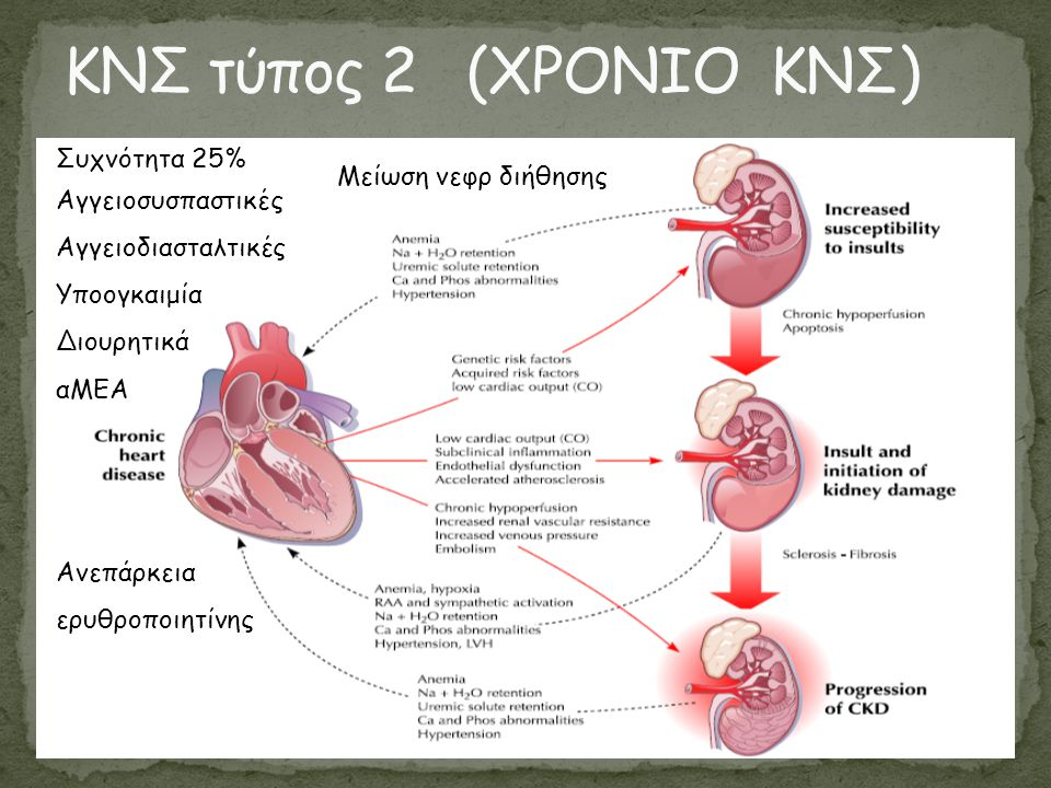 ΚΝΣ τύπος 2 (ΧΡΟΝΙΟ ΚΝΣ) Συχνότητα 25% Μείωση νεφρ διήθησης
