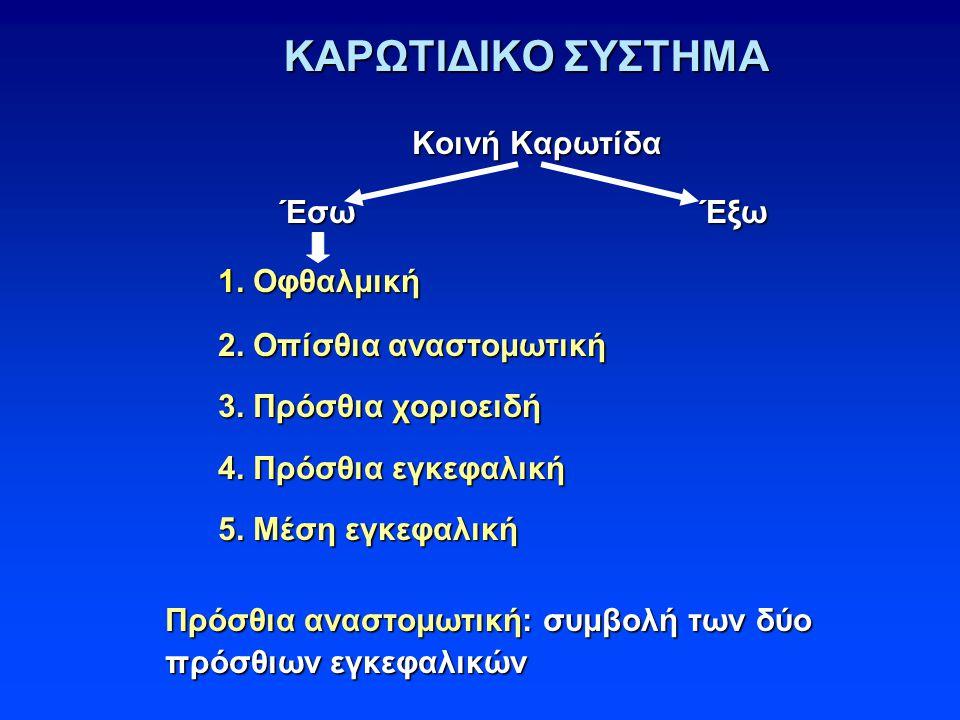 ΚΑΡΩΤΙΔΙΚΟ ΣΥΣΤΗΜΑ Κοινή Καρωτίδα Έσω Έξω 1. Οφθαλμική