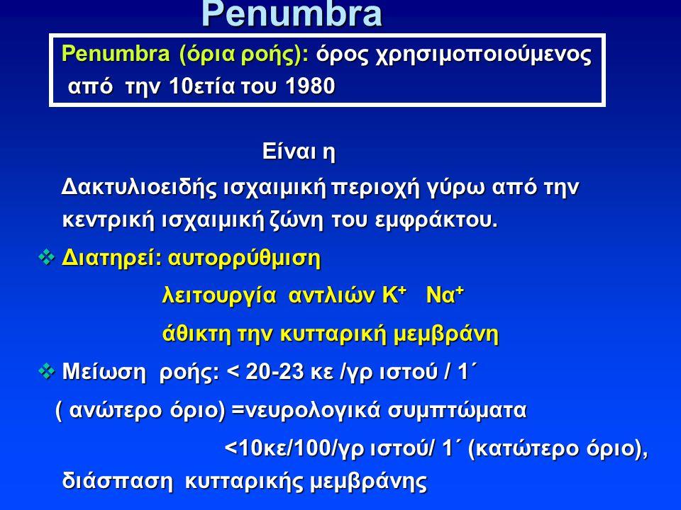 Penumbra Penumbra (όρια ροής): όρος χρησιμοποιούμενος