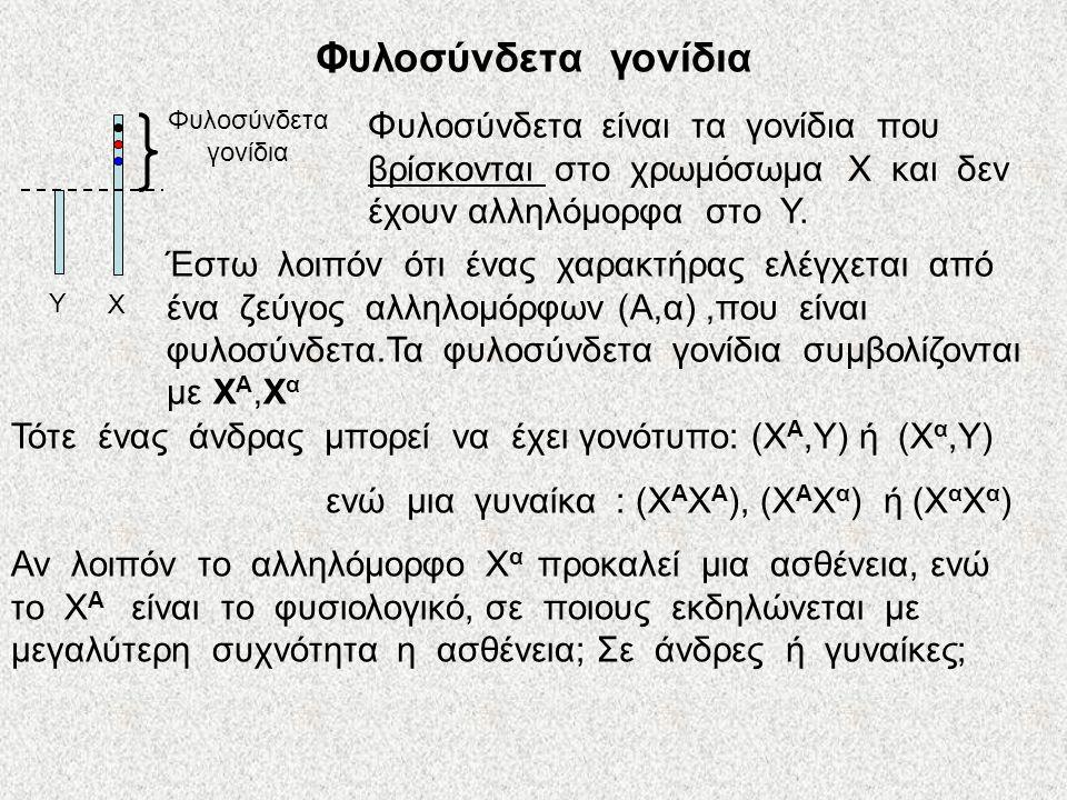Φυλοσύνδετα γονίδια Χ. Υ. Φυλοσύνδετα γονίδια.