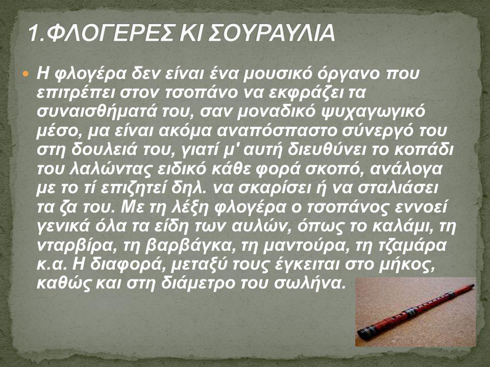 1.ΦΛΟΓΕΡΕΣ ΚΙ ΣΟΥΡΑΥΛΙΑ