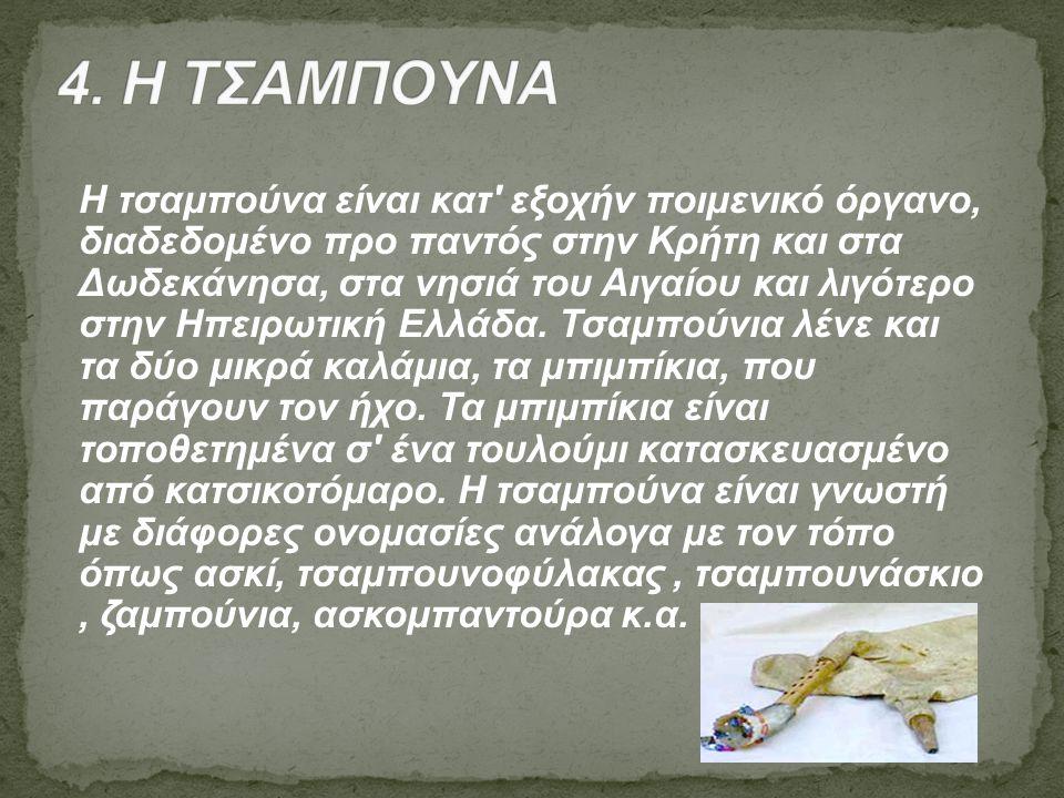 4. Η ΤΣΑΜΠΟΥΝΑ