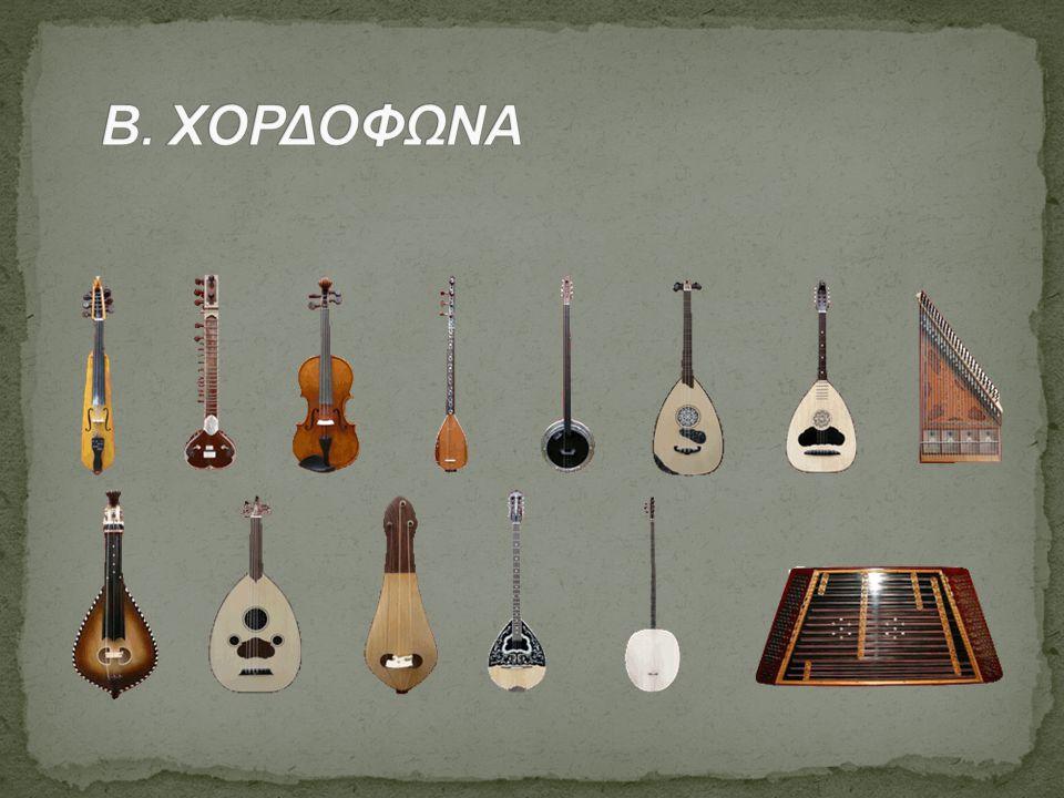 Β. ΧΟΡΔΟΦΩΝΑ