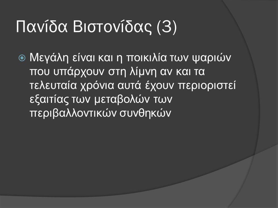Πανίδα Βιστονίδας (3)