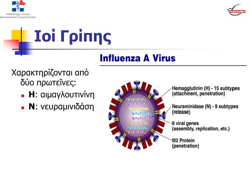 Ιοί Γρίπης Χαρακτηρίζονται από δύο πρωτεΐνες: Η: αιμαγλουτινίνη