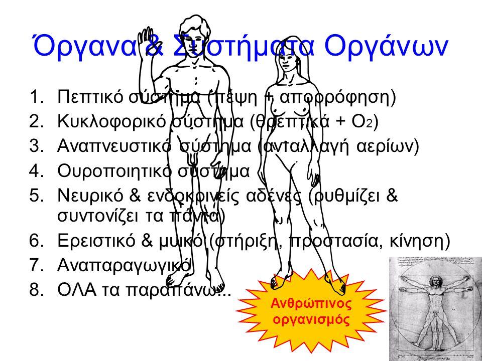 Όργανα & Συστήματα Οργάνων