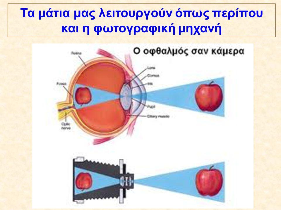 Τα μάτια μας λειτουργούν όπως περίπου και η φωτογραφική μηχανή