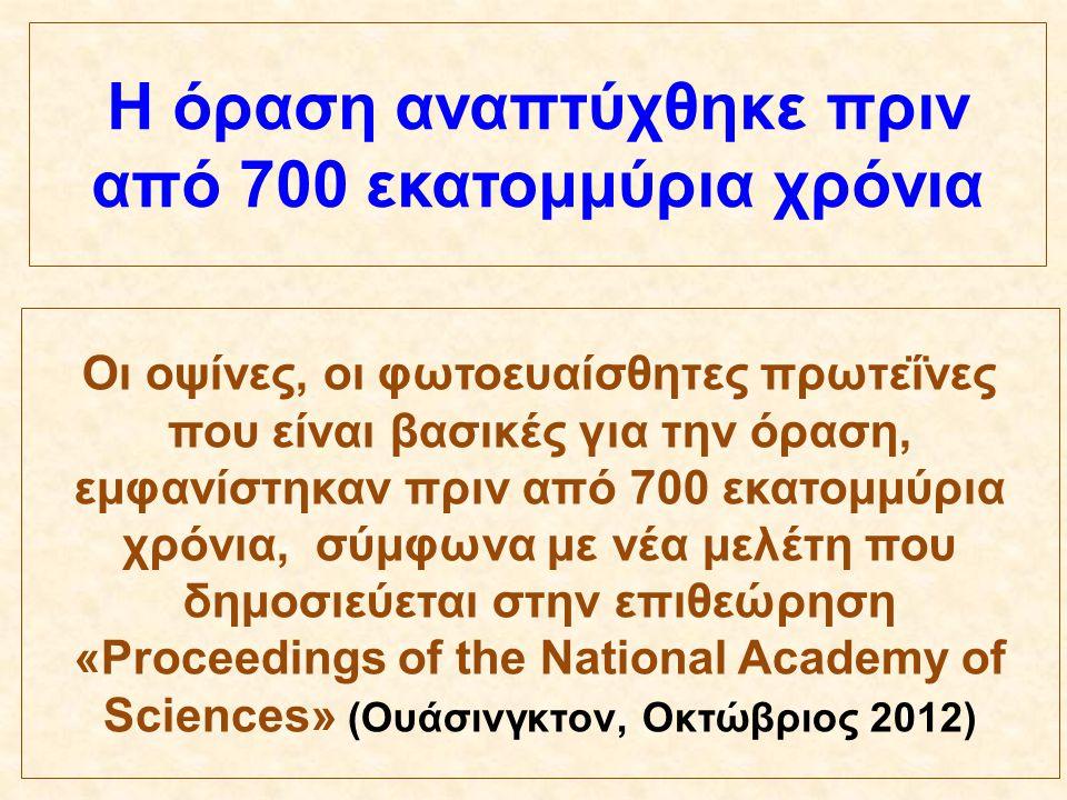 Η όραση αναπτύχθηκε πριν από 700 εκατομμύρια χρόνια