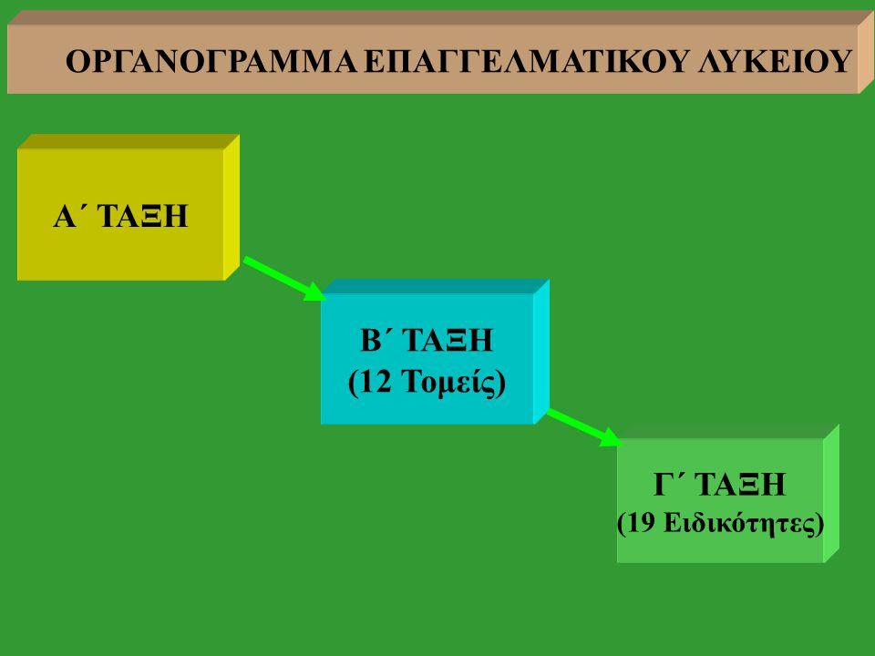 Α΄ ΤΑΞΗ Β΄ ΤΑΞΗ (12 Τομείς) Γ΄ ΤΑΞΗ