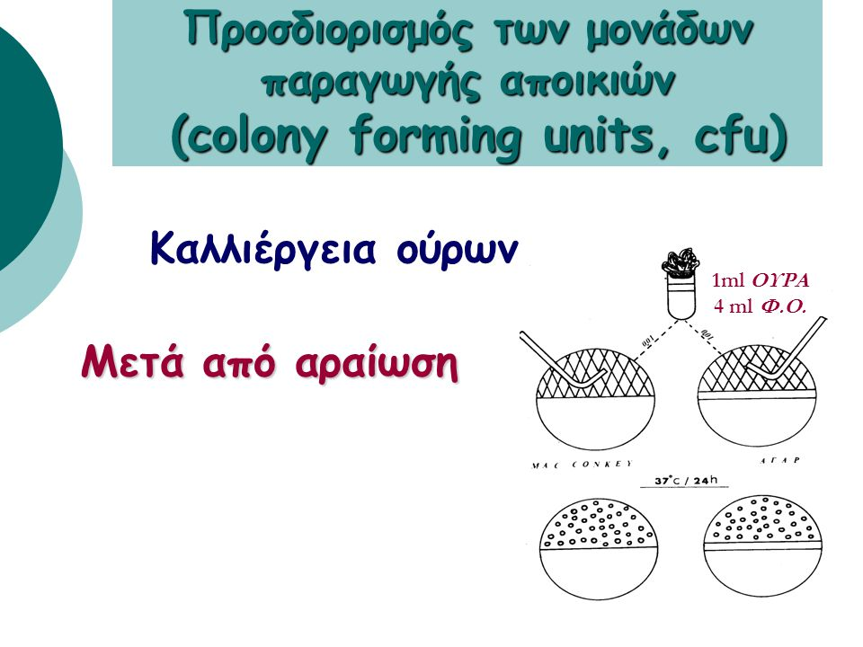 Προσδιορισμός των μονάδων παραγωγής αποικιών (colony forming units, cfu)