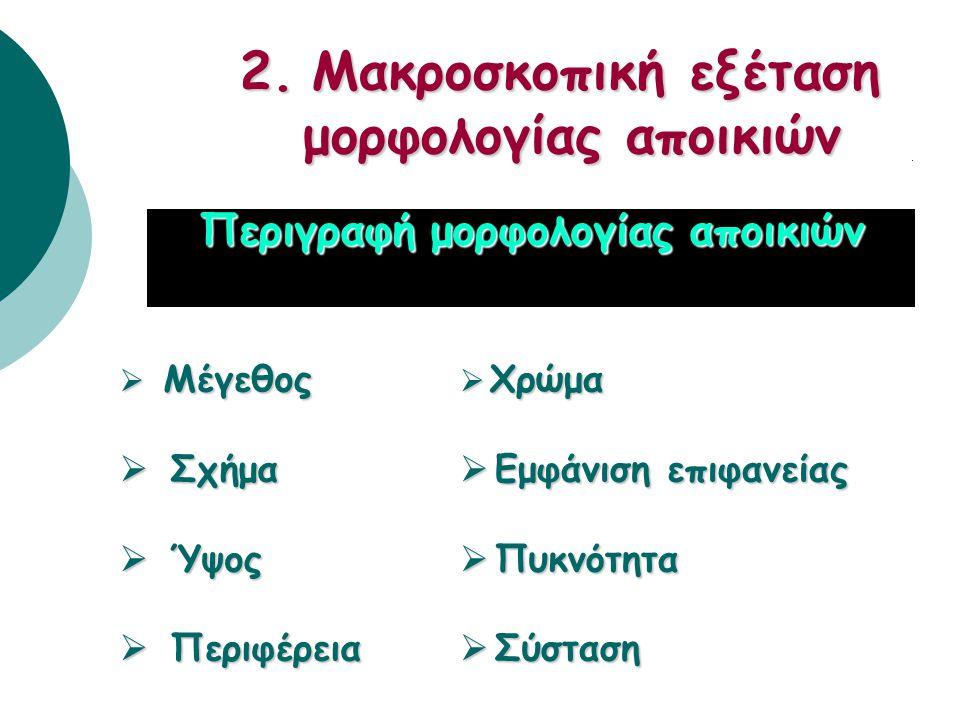 2. Μακροσκοπική εξέταση μορφολογίας αποικιών
