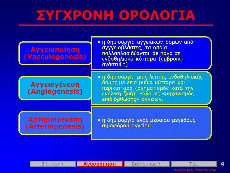 ΣΥΓΧΡΟΝΗ ΟΡΟΛΟΓΙΑ Αγγειοποίηση (Vasculogenesis)