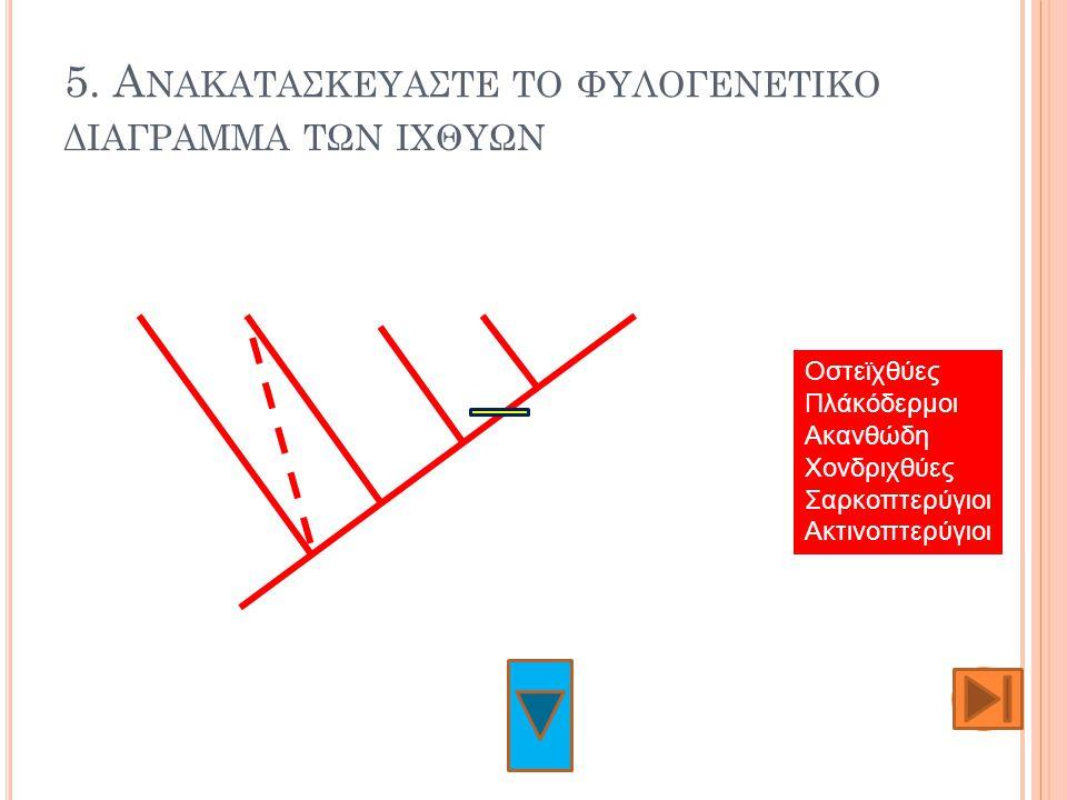 5. Ανακαταςκευαςτε το φυλογενετικο διαγραμμα των ιχθυων