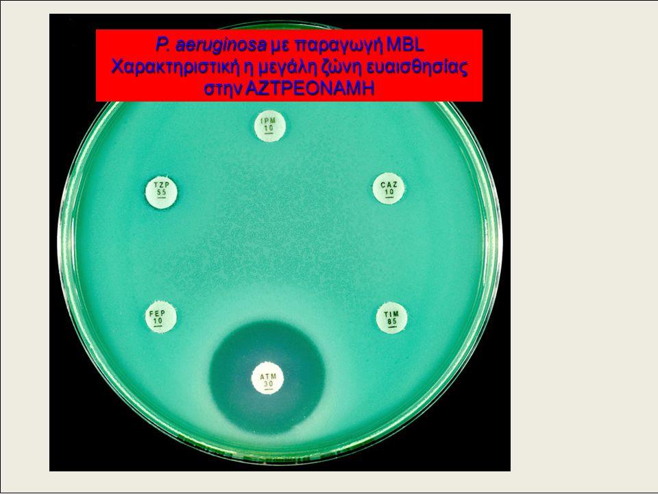 P. aeruginosa με παραγωγή ΜBL Χαρακτηριστική η μεγάλη ζώνη ευαισθησίας στην ΑΖΤΡΕΟΝΑΜΗ