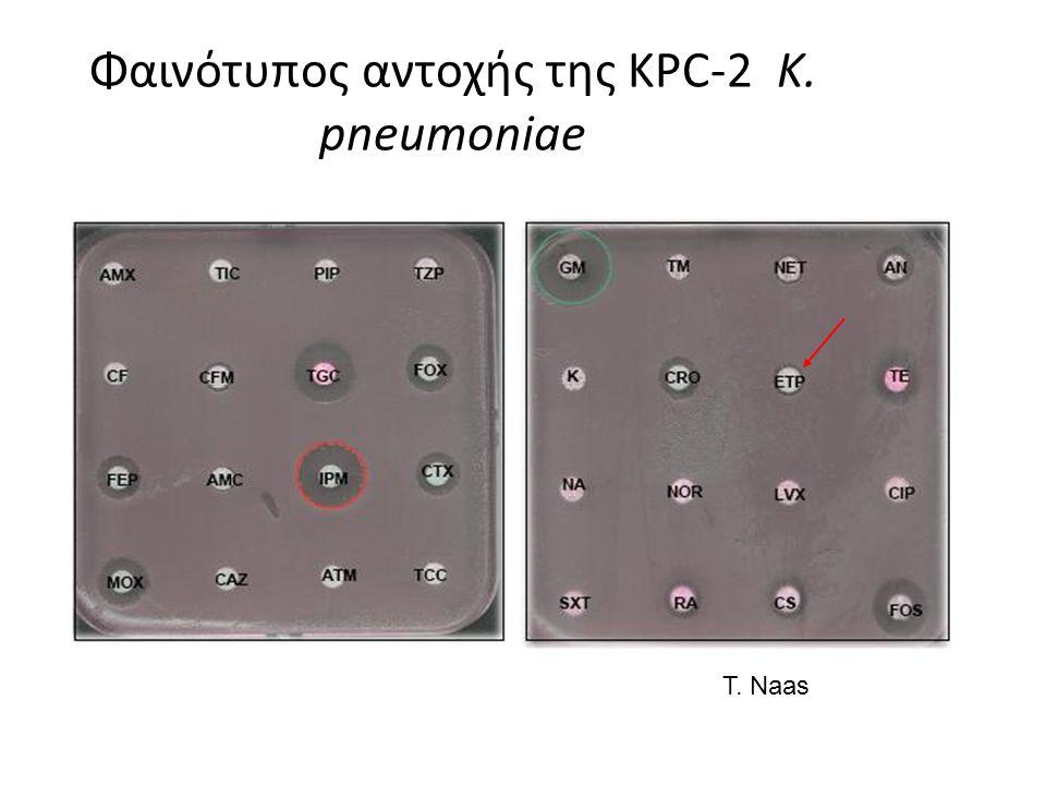 Φαινότυπος αντοχής της KPC-2 K. pneumoniae