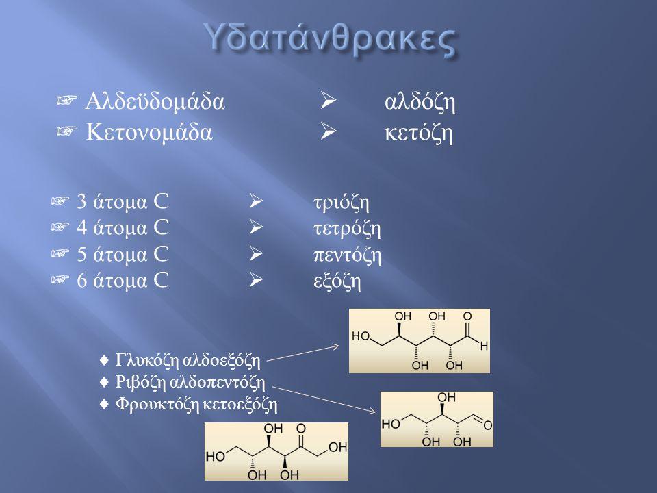 Υδατάνθρακες ☞ Αλδεϋδομάδα  αλδόζη ☞ Κετονομάδα  κετόζη