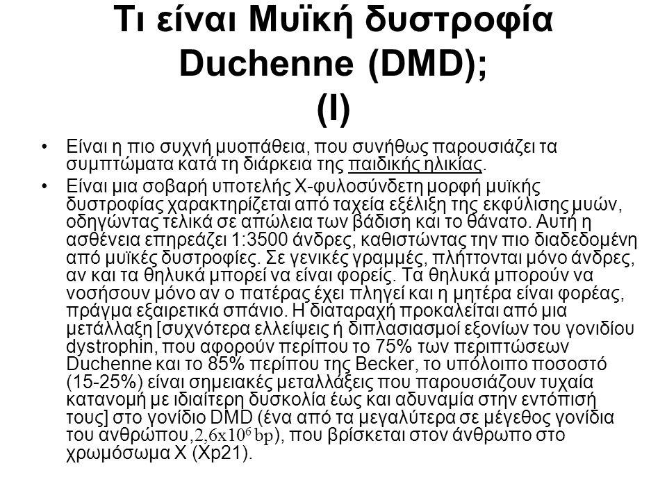 Τι είναι Μυϊκή δυστροφία Duchenne (DMD); (I)