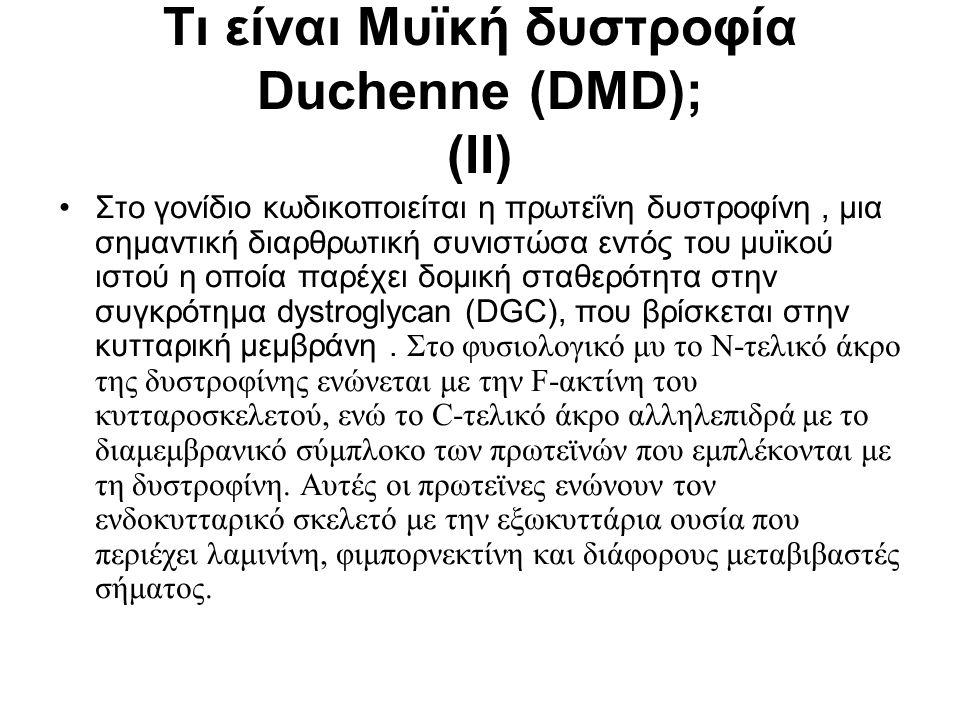 Τι είναι Μυϊκή δυστροφία Duchenne (DMD); (II)