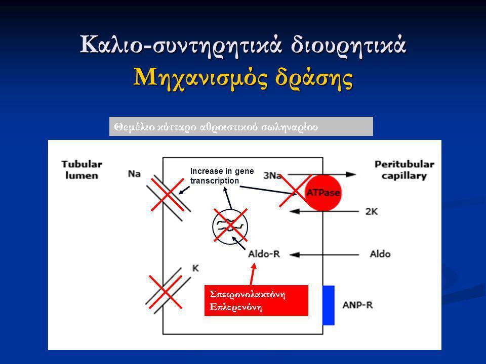 Καλιο-συντηρητικά διουρητικά Μηχανισμός δράσης
