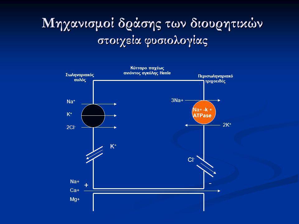 Μηχανισμοί δράσης των διουρητικών στοιχεία φυσιολογίας