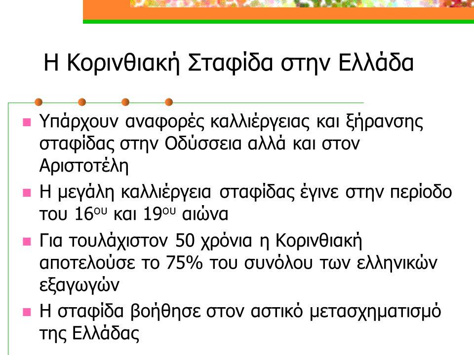 Η Κορινθιακή Σταφίδα στην Ελλάδα