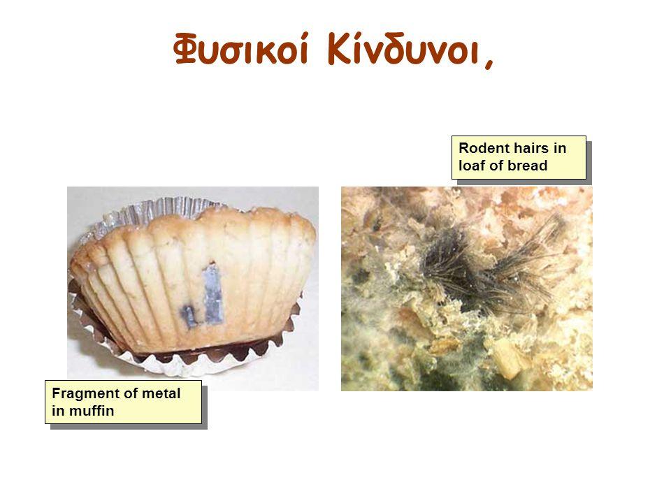 Φυσικοί Κίνδυνοι, Rodent hairs in loaf of bread